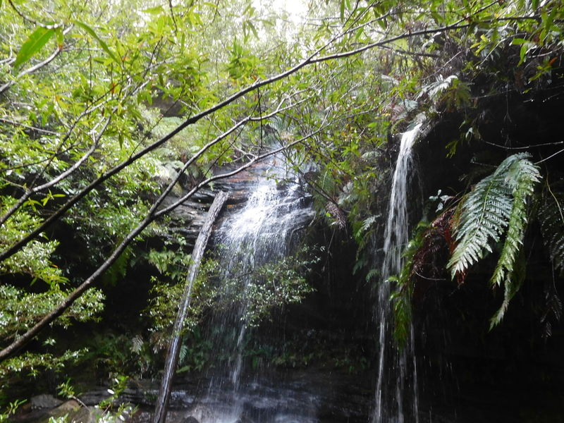 Photo: Hazelbrook-Waterfalls-1